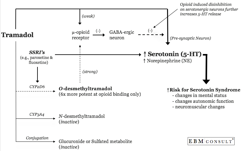 interaction tramadol celexa with