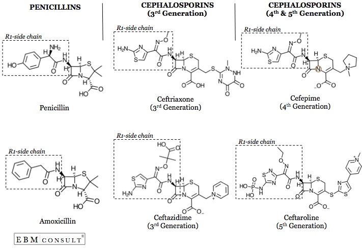 Penicillin vs 3rd and 4th Generation Cephalosporin Antibiotic Image