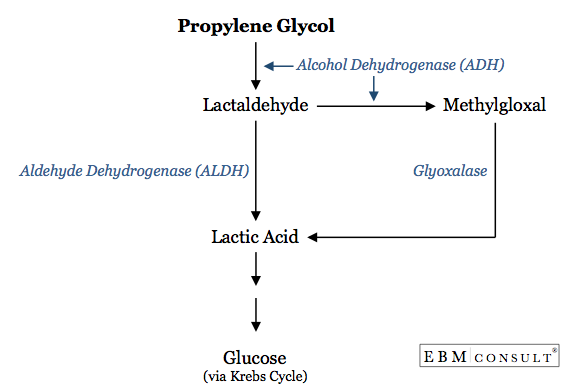 Propylene Glycol Metabolic Pathway to Form Lactic Acid